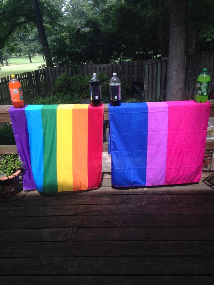 LGBT Pride 2014 - flags